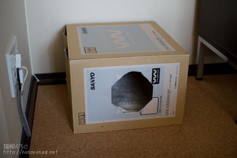 box100512_2.jpg
