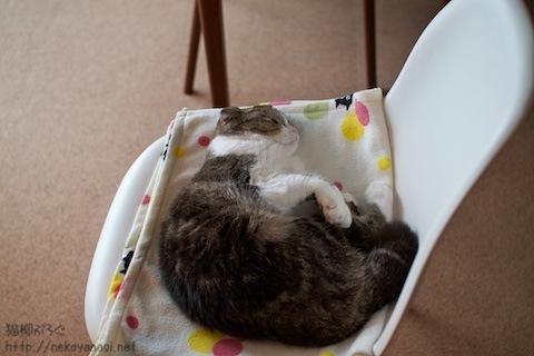 chair100707_3.jpg