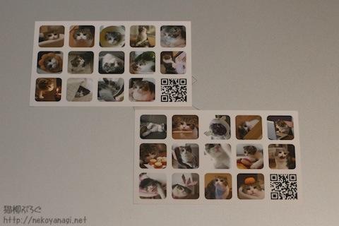 card100821_2.jpg