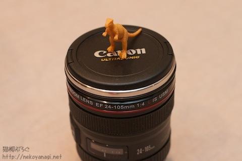 lens100830_7.jpg