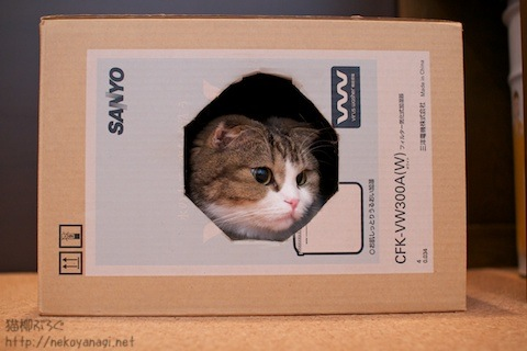 box101024_1.jpg