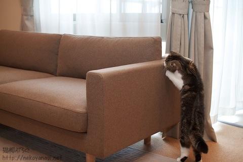 sofa101030_1.jpg