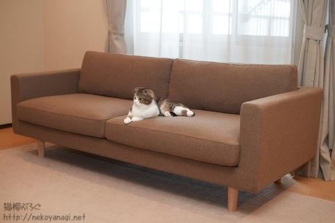 sofa101030_5.jpg