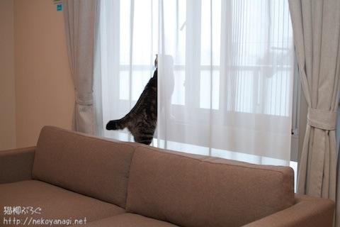 sofa101030_6.jpg