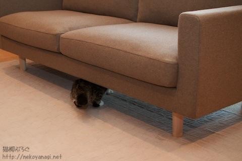 sofa101030_7.jpg
