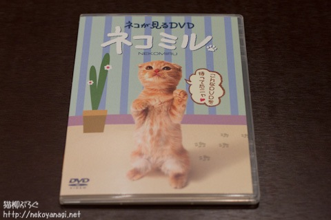 DVD110122_1.jpg