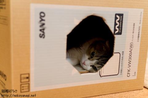 box110211_1.jpg