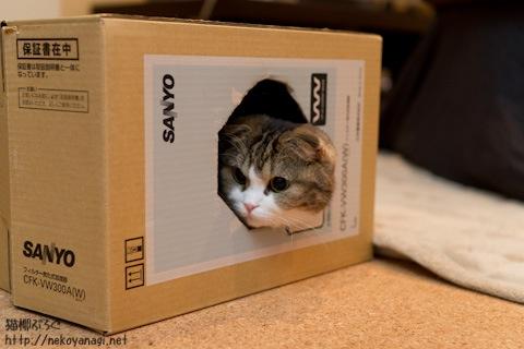 box110211_2.jpg