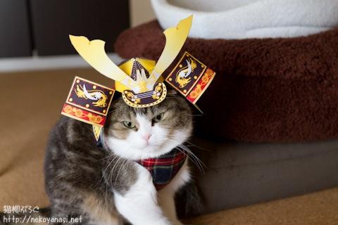 samurai110505_3.jpg