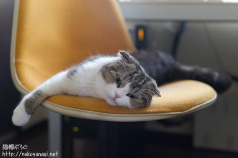 chair110831_2.jpg