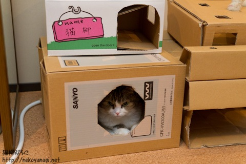 box111019_1.jpg