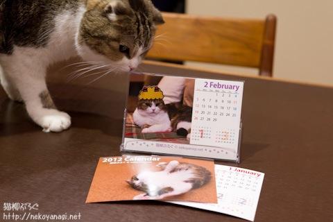 calendar111201_2.jpg