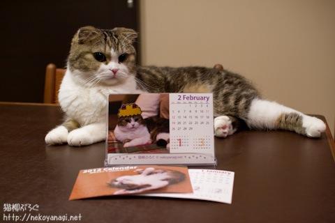 calendar111201_3.jpg