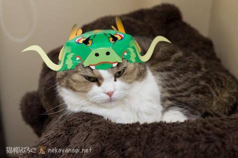 dragon120101_3.jpg