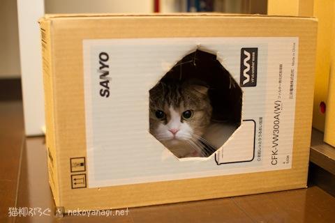box120606_1.jpg