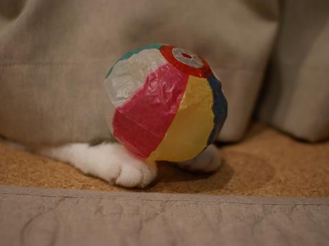 baloon090813_10.jpg