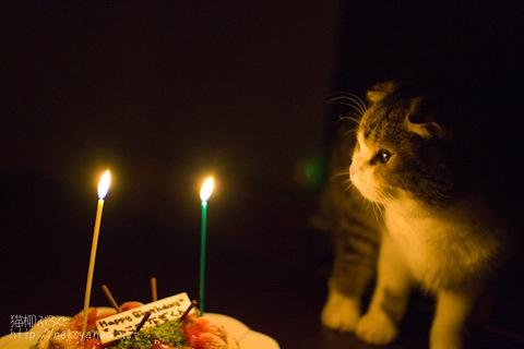 birthday100304_3.jpg