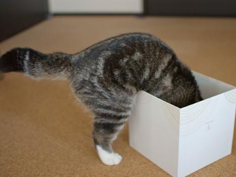 box090123_2.jpg