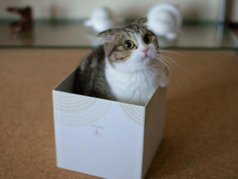 box090123_3.jpg