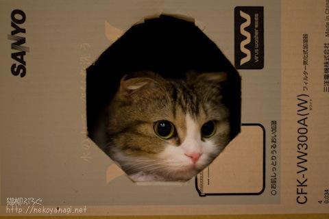 box091102_1.jpg