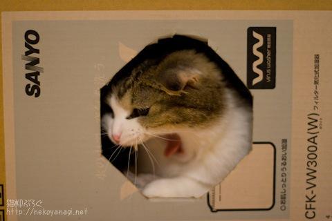 box091102_2.jpg