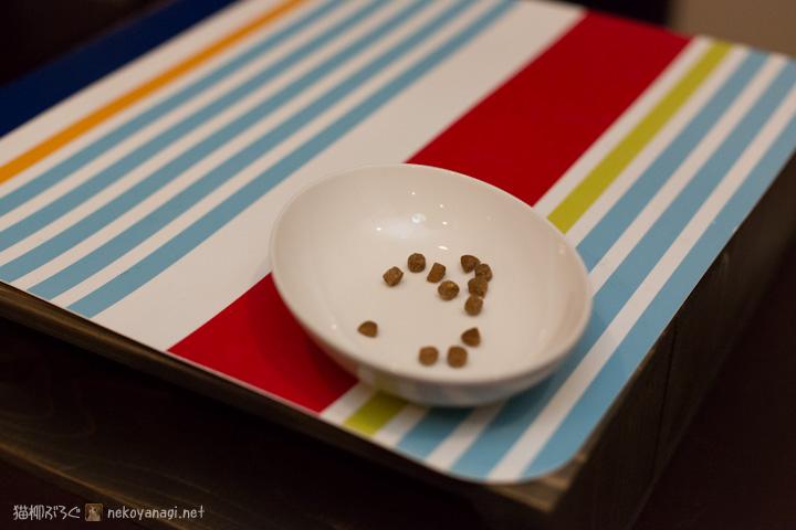 置いてけぼりの皿