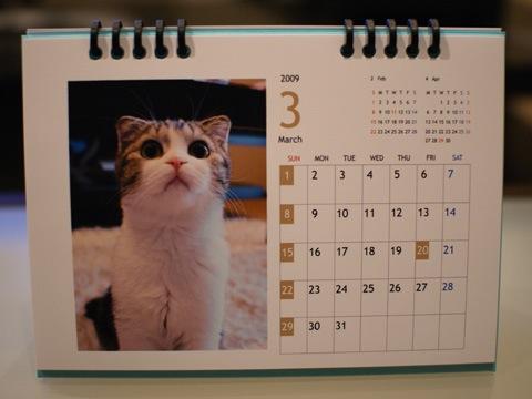 calendar081130_1.jpg