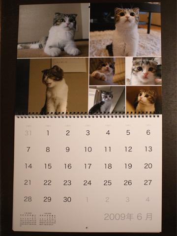 calendar081131_3.jpg