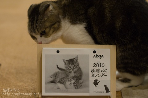 calendar091212_3.jpg