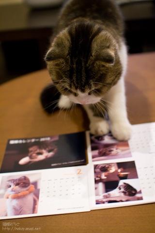 calendar091228_2.jpg