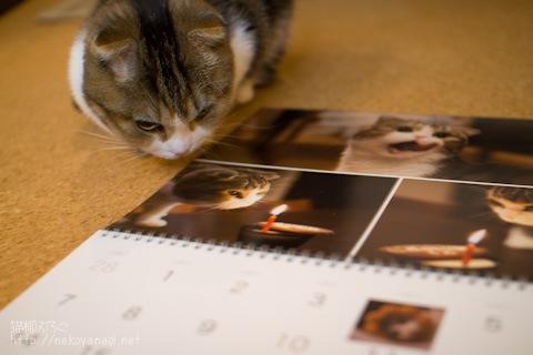 calendar091230_3.jpg