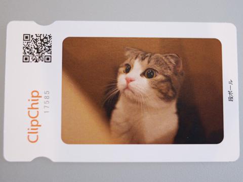clipchip081019_1.jpg