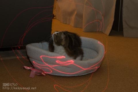 laser091216_2.jpg