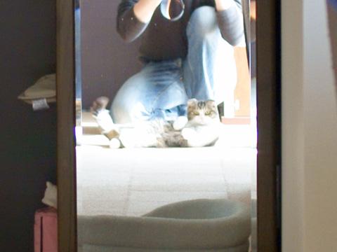 mirror090204_2.jpg