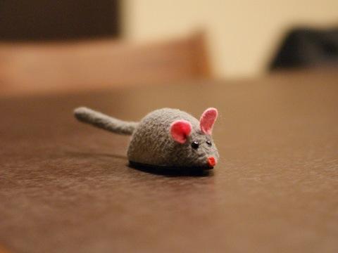 mouse081107_1.jpg