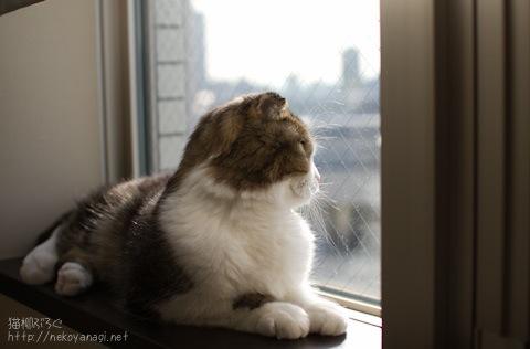 window100330_1.jpg