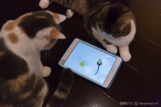 iPad遊び