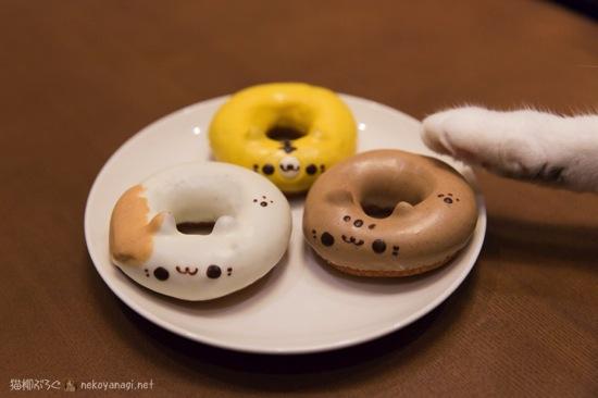 猫ドーナツ