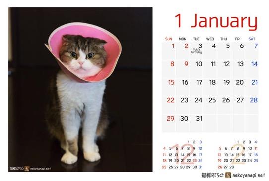 カレンダーだよ!